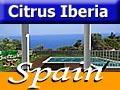 Citrus Iberia Costa Blanca